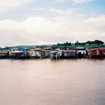 249 Amazonas (Copy)